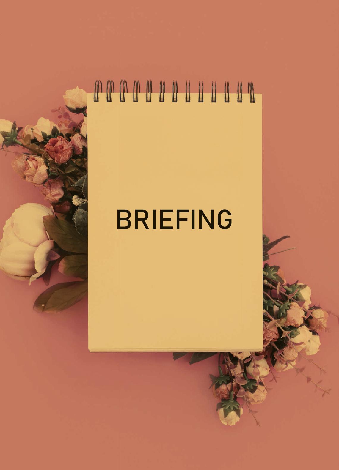 Briefing en eventos